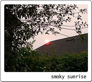 Smoky-sky